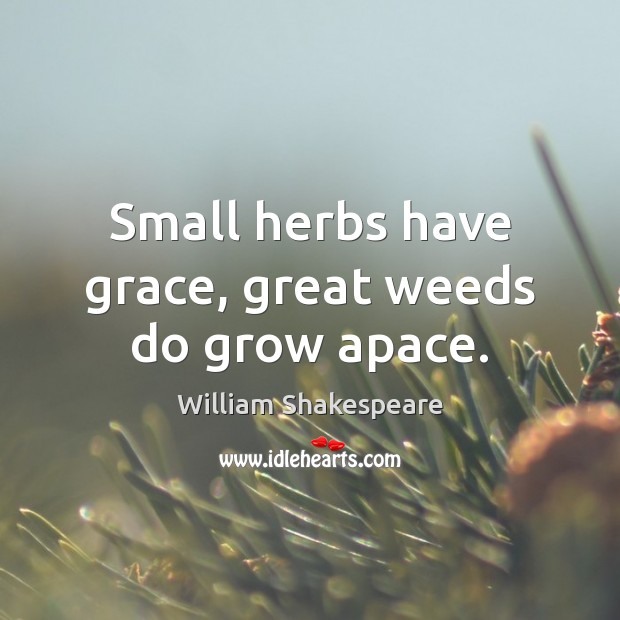 Image, Small herbs have grace, great weeds do grow apace.