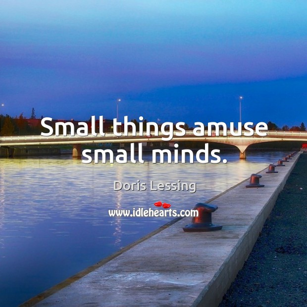 Small things amuse small minds. Doris Lessing Picture Quote