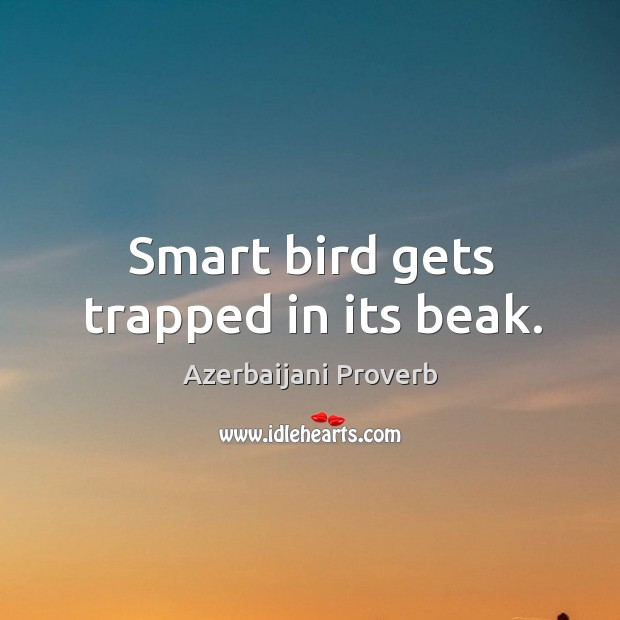 Smart bird gets trapped in its beak. Azerbaijani Proverbs Image