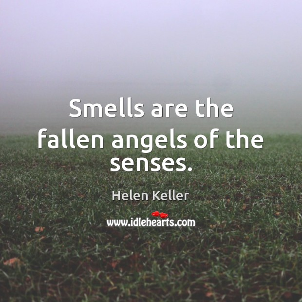 Smells are the fallen angels of the senses. Image