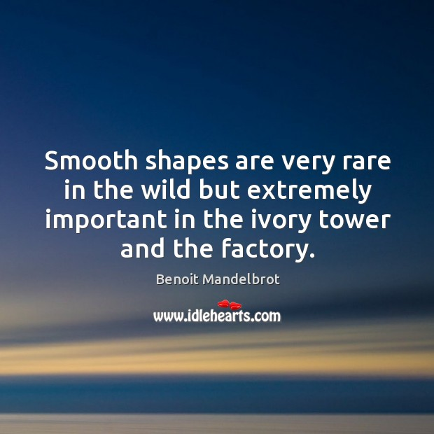Smooth shapes are very rare in the wild but extremely important in the ivory tower and the factory. Benoit Mandelbrot Picture Quote