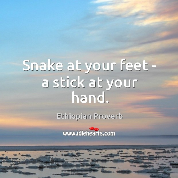 Snake at your feet – a stick at your hand. Ethiopian Proverbs Image