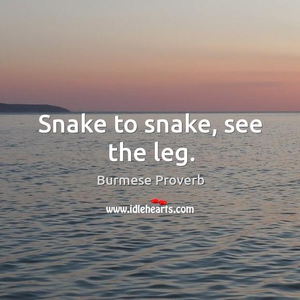Snake to snake, see the leg. Burmese Proverbs Image