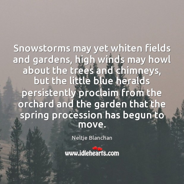 Snowstorms may yet whiten fields and gardens, high winds may howl about Image