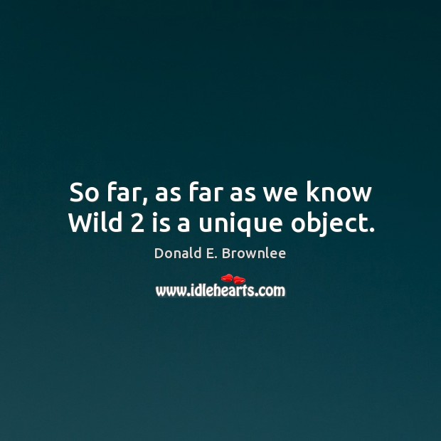 So far, as far as we know Wild 2 is a unique object. Image