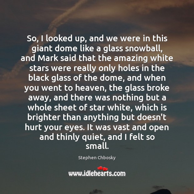 So, I looked up, and we were in this giant dome like Stephen Chbosky Picture Quote