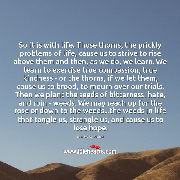 So it is with life. Those thorns, the prickly problems of life, Image