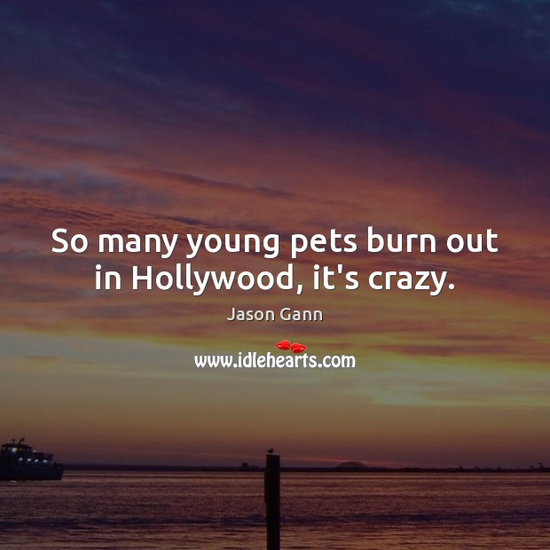 So many young pets burn out in Hollywood, it's crazy. Image