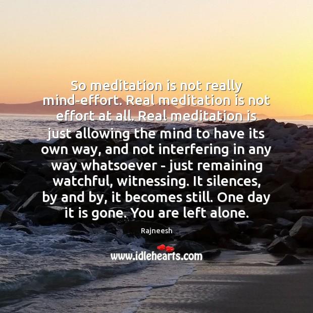 So meditation is not really mind-effort. Real meditation is not effort at Image