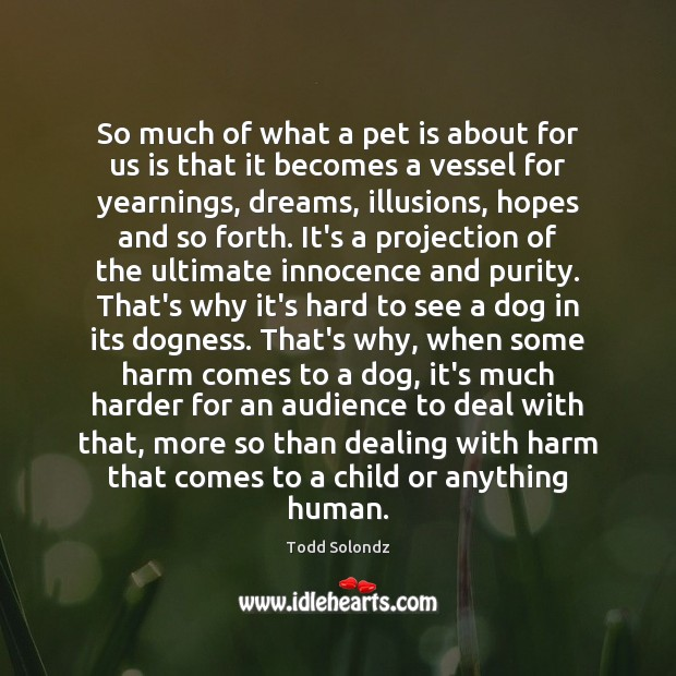 Image, So much of what a pet is about for us is that