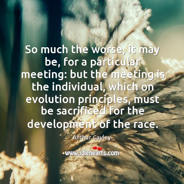 Image, So much the worse, it may be, for a particular meeting: but the meeting is the individual
