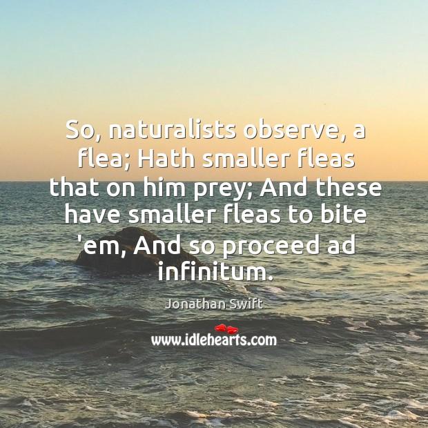So, naturalists observe, a flea; Hath smaller fleas that on him prey; Image