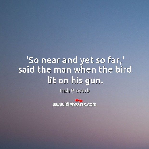 'so near and yet so far,' said the man when the bird lit on his gun. Irish Proverbs Image