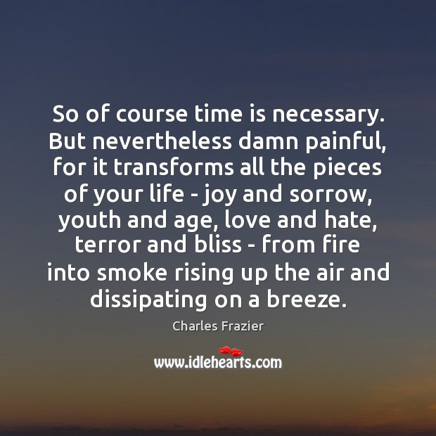 So of course time is necessary. But nevertheless damn painful, for it Love and Hate Quotes Image