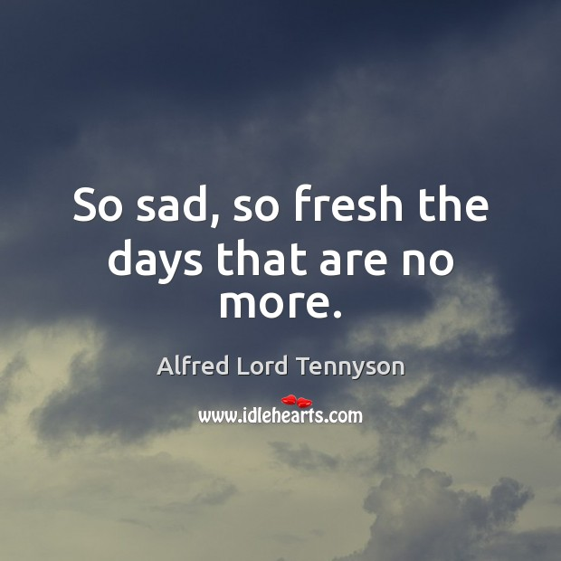 Image, So sad, so fresh the days that are no more.