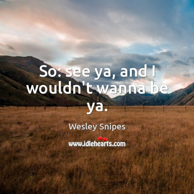 So: see ya, and I wouldn't wanna be ya. Wesley Snipes Picture Quote
