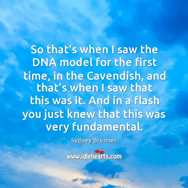 So that's when I saw the dna model for the first time, in the cavendish, and that's when I saw that this was it. Sydney Brenner Picture Quote