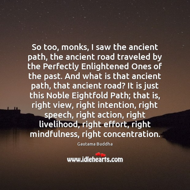 Image, So too, monks, I saw the ancient path, the ancient road traveled