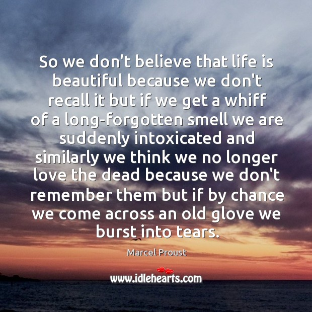 So we don't believe that life is beautiful because we don't recall Life is Beautiful Quotes Image