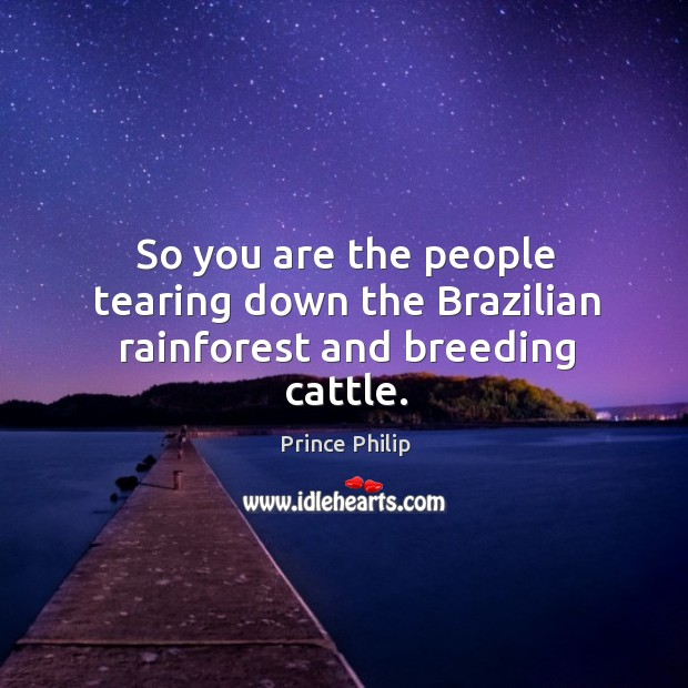 So you are the people tearing down the Brazilian rainforest and breeding cattle. Image