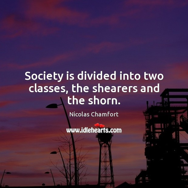 Society is divided into two classes, the shearers and the shorn. Society Quotes Image