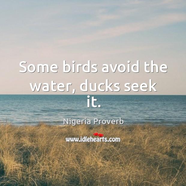 Some birds avoid the water, ducks seek it. Nigeria Proverbs Image
