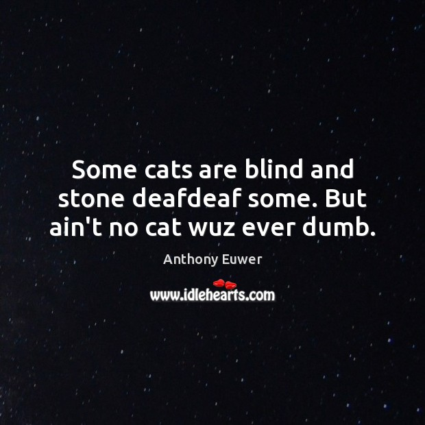Some cats are blind and stone deafdeaf some. But ain't no cat wuz ever dumb. Image