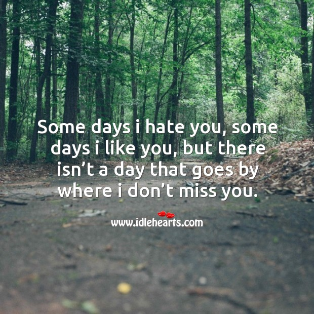 Some days I hate you, some days I like you, but there isn't a day that goes by where I don't miss you. Image