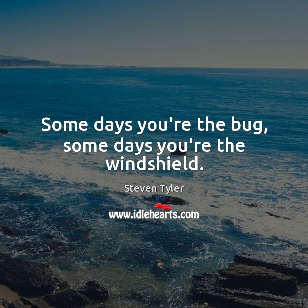 Some Days Youre The Bug Some Days Youre The Windshield