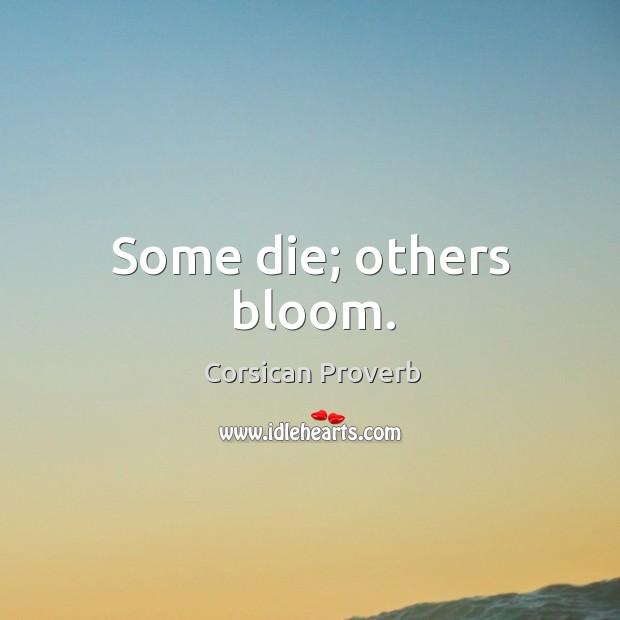 Some die; others bloom. Image