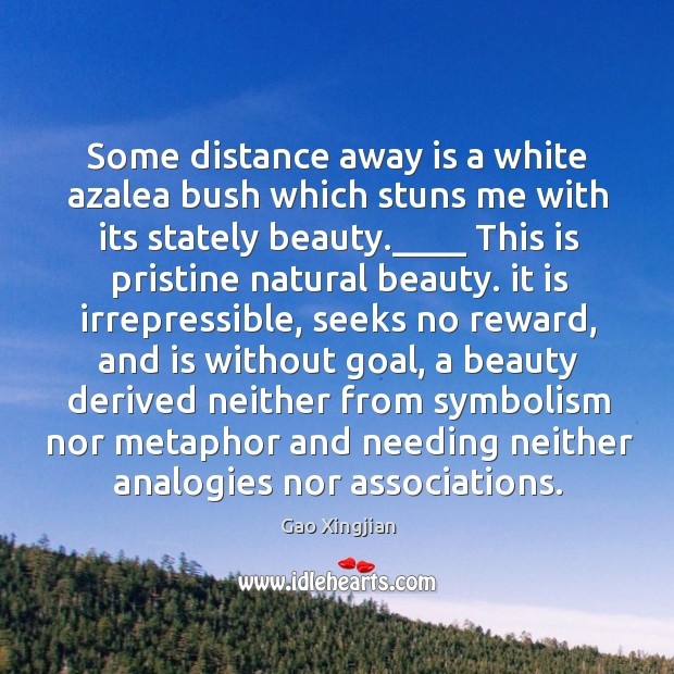 Some distance away is a white azalea bush which stuns me with Gao Xingjian Picture Quote