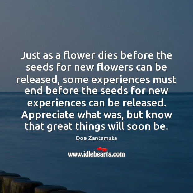 Some experiences must end before the seeds for new experiences can be released. Appreciate Quotes Image