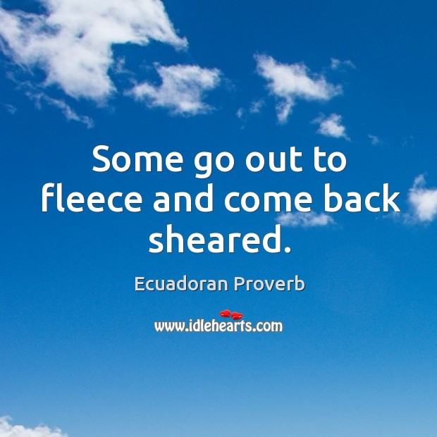 Some go out to fleece and come back sheared. Ecuadoran Proverbs Image