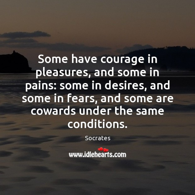 Some have courage in pleasures, and some in pains: some in desires, Courage Quotes Image