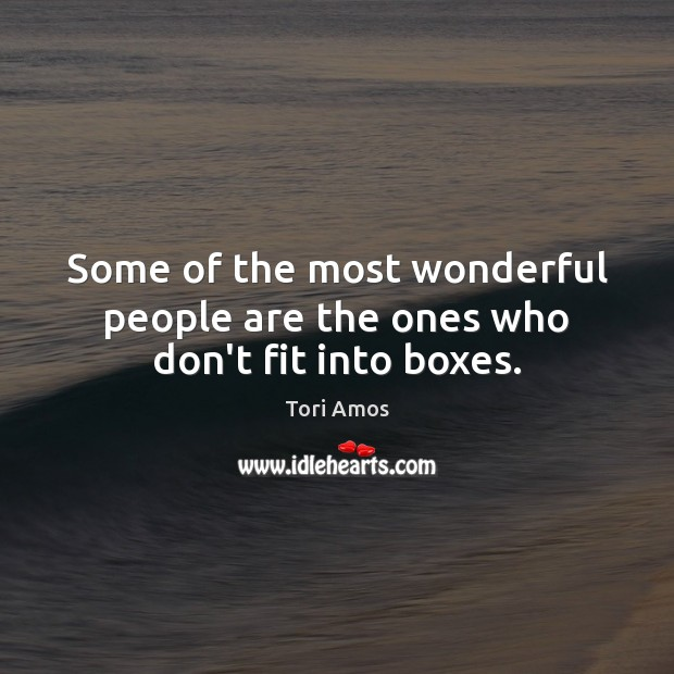 Some of the most wonderful people are the ones who don't fit into boxes. Tori Amos Picture Quote