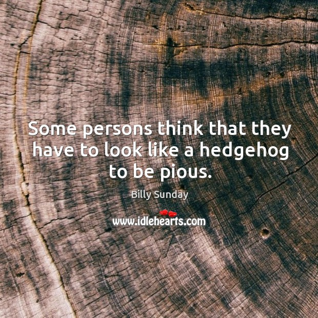 Some persons think that they have to look like a hedgehog to be pious. Image