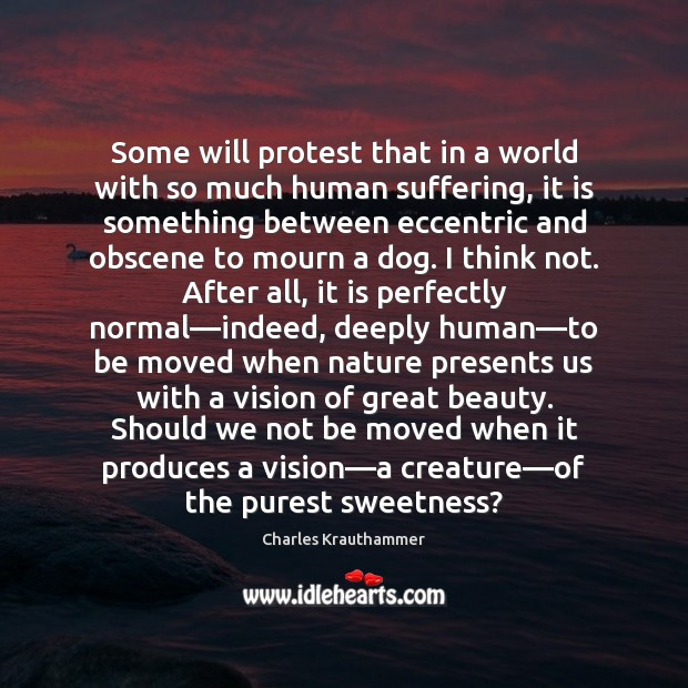 Some will protest that in a world with so much human suffering, Image