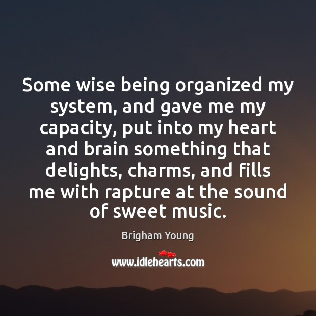 Some wise being organized my system, and gave me my capacity, put Brigham Young Picture Quote