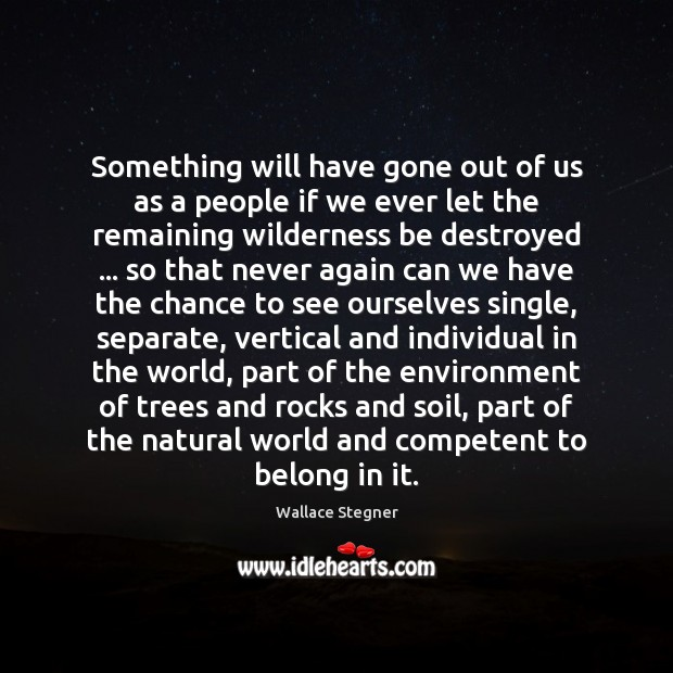 Something will have gone out of us as a people if we Environment Quotes Image