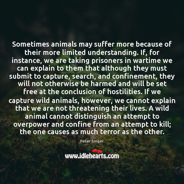 Sometimes animals may suffer more because of their more limited understanding. If, Peter Singer Picture Quote