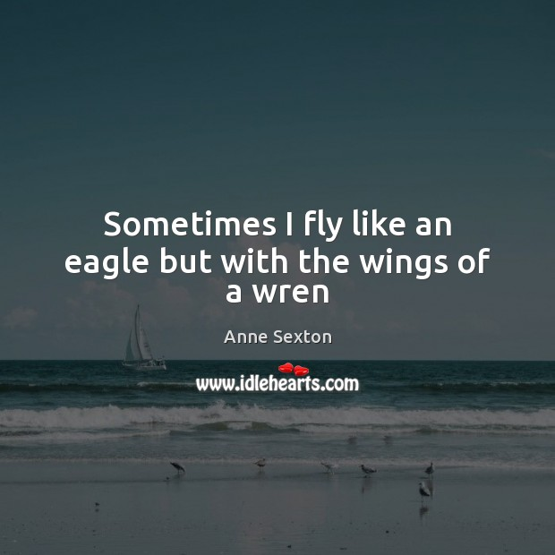 Sometimes I fly like an eagle but with the wings of a wren Anne Sexton Picture Quote