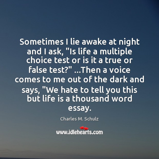 "Sometimes I lie awake at night and I ask, ""Is life a Image"