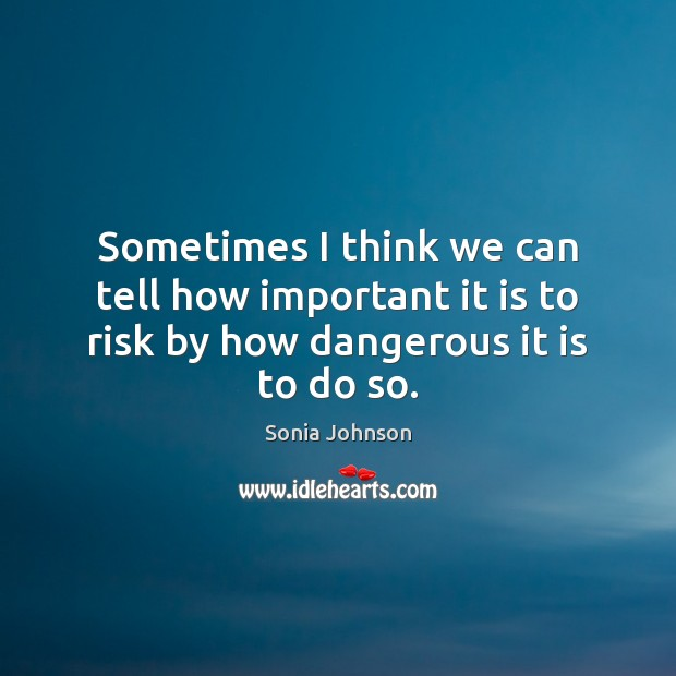 Image, Sometimes I think we can tell how important it is to risk by how dangerous it is to do so.