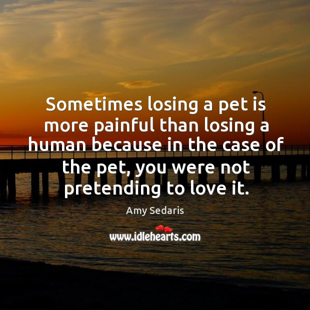 Sometimes losing a pet is more painful than losing a human because Image