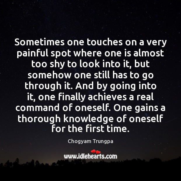Sometimes one touches on a very painful spot where one is almost Chogyam Trungpa Picture Quote