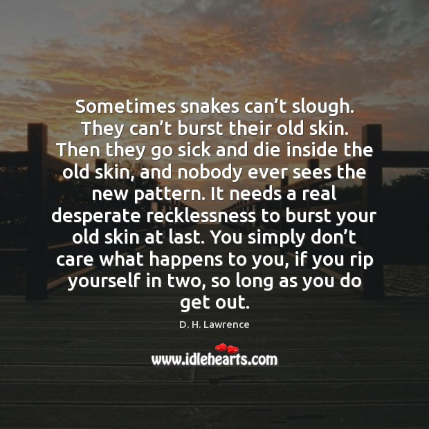 Sometimes snakes can't slough. They can't burst their old skin. Image