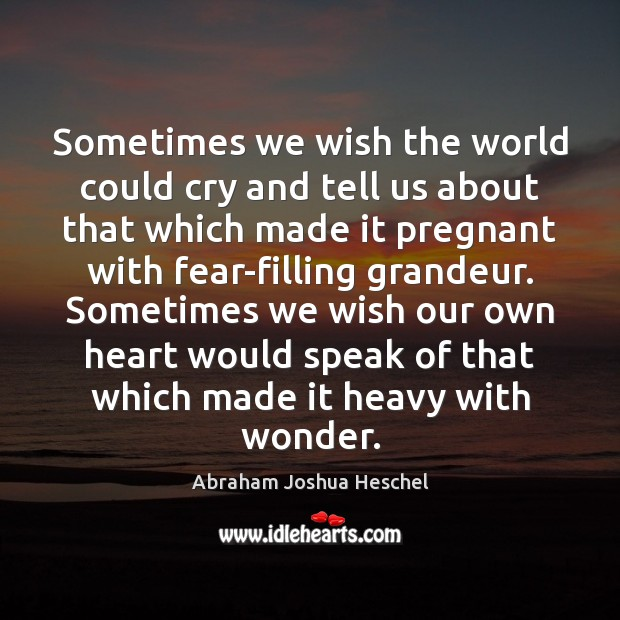 Sometimes we wish the world could cry and tell us about that Abraham Joshua Heschel Picture Quote