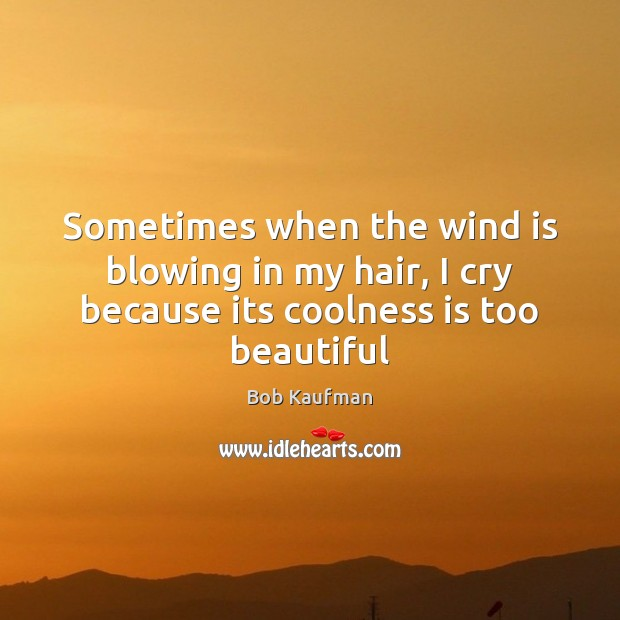 Image, Sometimes when the wind is blowing in my hair, I cry because its coolness is too beautiful