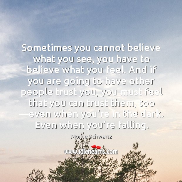 Sometimes you cannot believe what you see, you have to believe what Morrie Schwartz Picture Quote