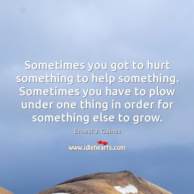 Sometimes you got to hurt something to help something. Sometimes you have to plow under one Image